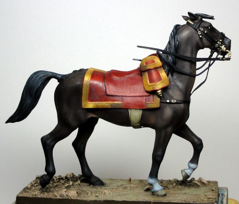 Maréchal Berthier, prince de Neuchâtel de Metal modèles, terminé Dsc05415