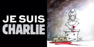 Salon de discussion publique 2014 - Page 23 Jesuis10