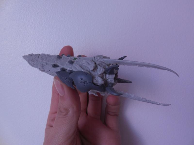 Vrille de la flotte ruche Ydrassil Dscn0922