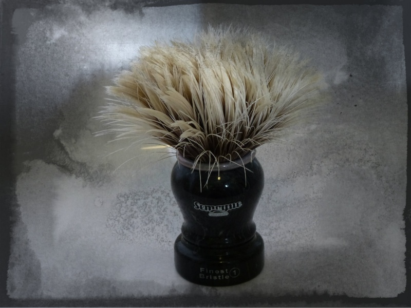 Video : Semogue 2011 limited edition shaving brushes. P1030024