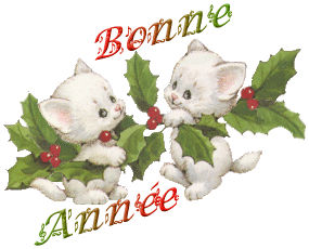 voeux nouvel an  Bonne-10