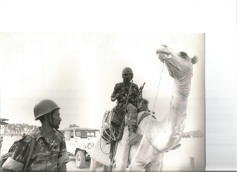 l'histoire contemporaine vue par les photos... Scan10