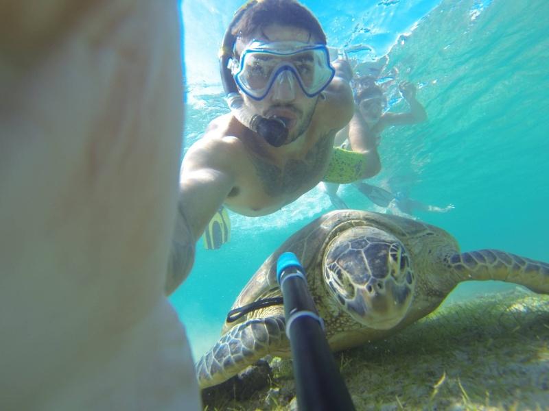 Bonjour de Mayotte Img_0410