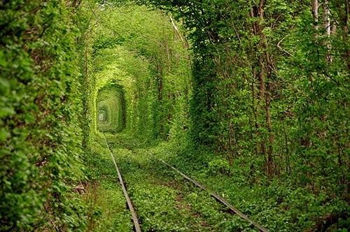 Rêver avec le réel, paysages - Page 2 Tunela10