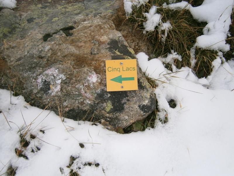 première neige !!! P8310111