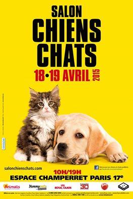 Salon chiens chats 2015 10959511