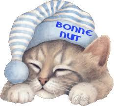 Bonne nuit les petits !! - Page 3 Nuit1610