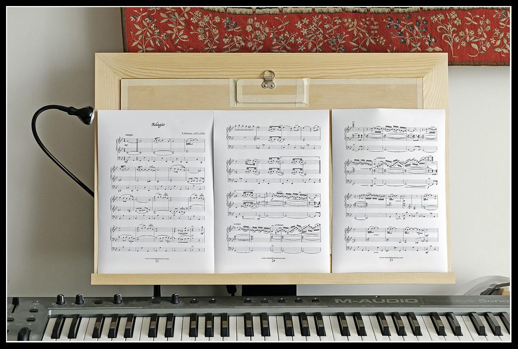 Mon orgue de bureau ! (Hauptwerk) - Page 2 _dsc1311