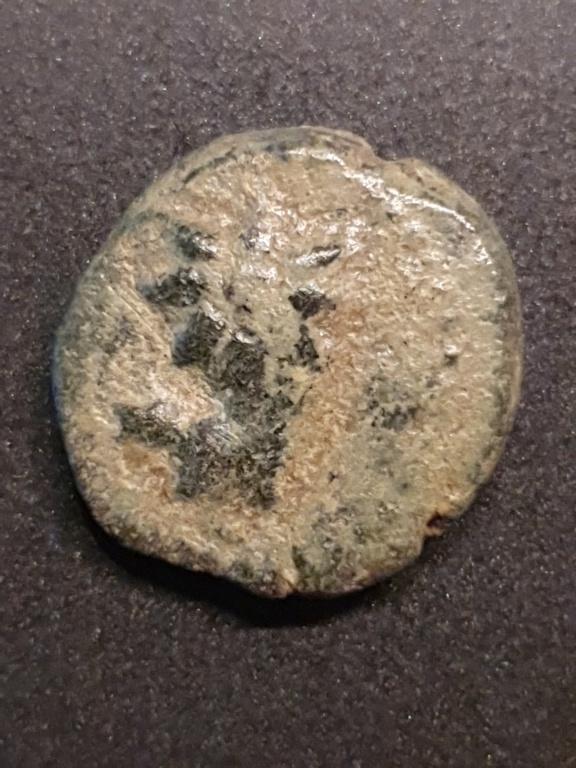 Tout petit bronze Pictur43