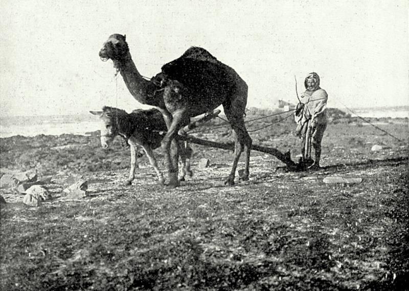 Le MAROC en 1932 Img_b_18