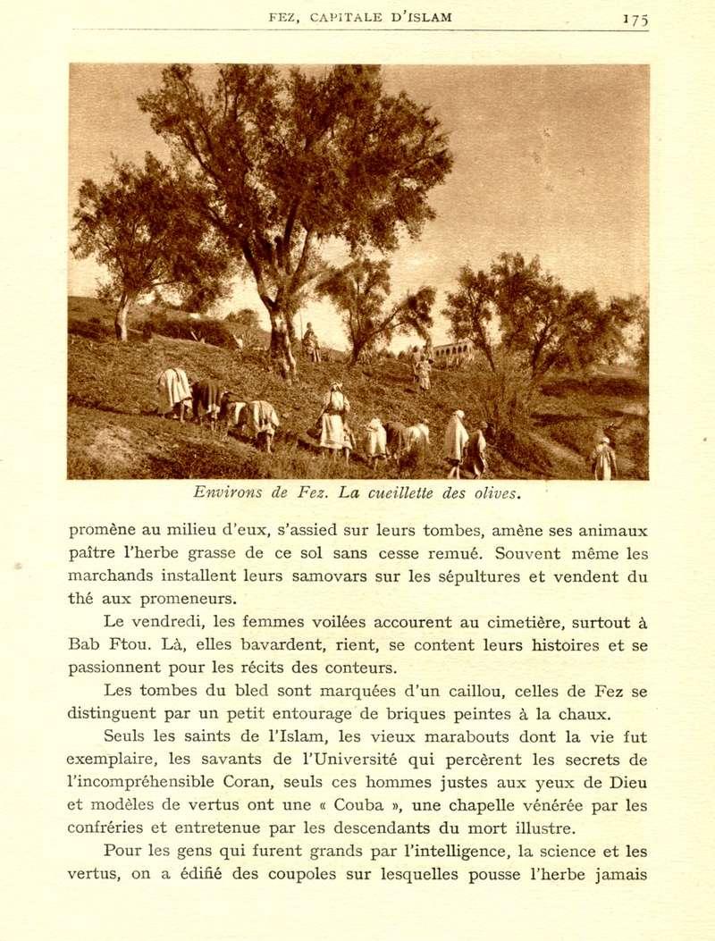 LE MAROC - Page 7 Le_ma174