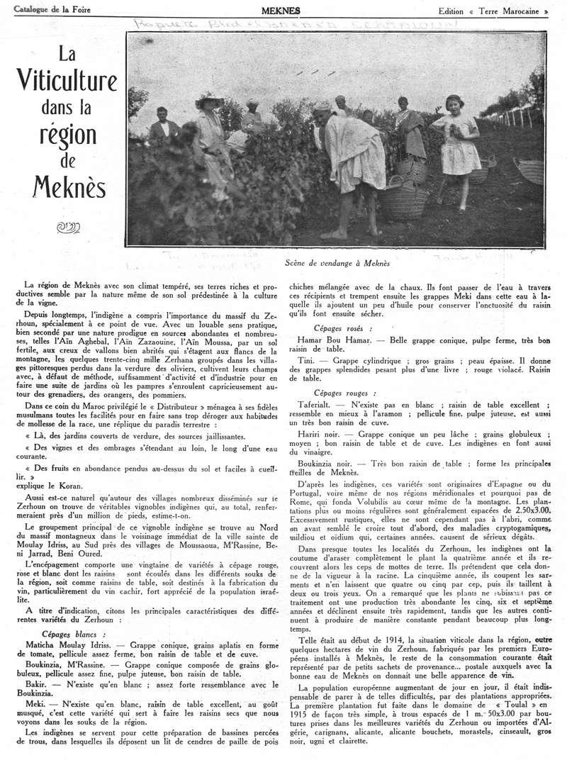 Foire de Meknès - Page 2 Swsca128