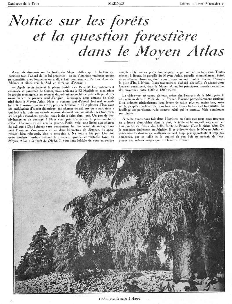 Foire de Meknès - Page 2 Swsca130
