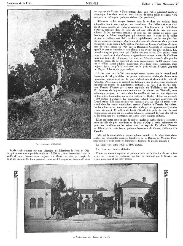 Foire de Meknès - Page 2 Swsca131