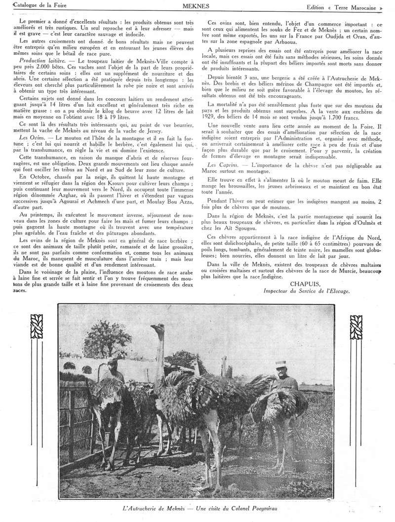 Foire de Meknès - Page 2 Swsca135