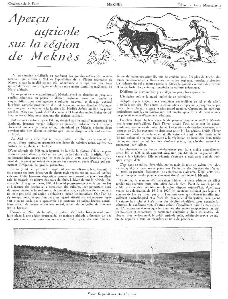 Foire de Meknès - Page 2 Swsca136