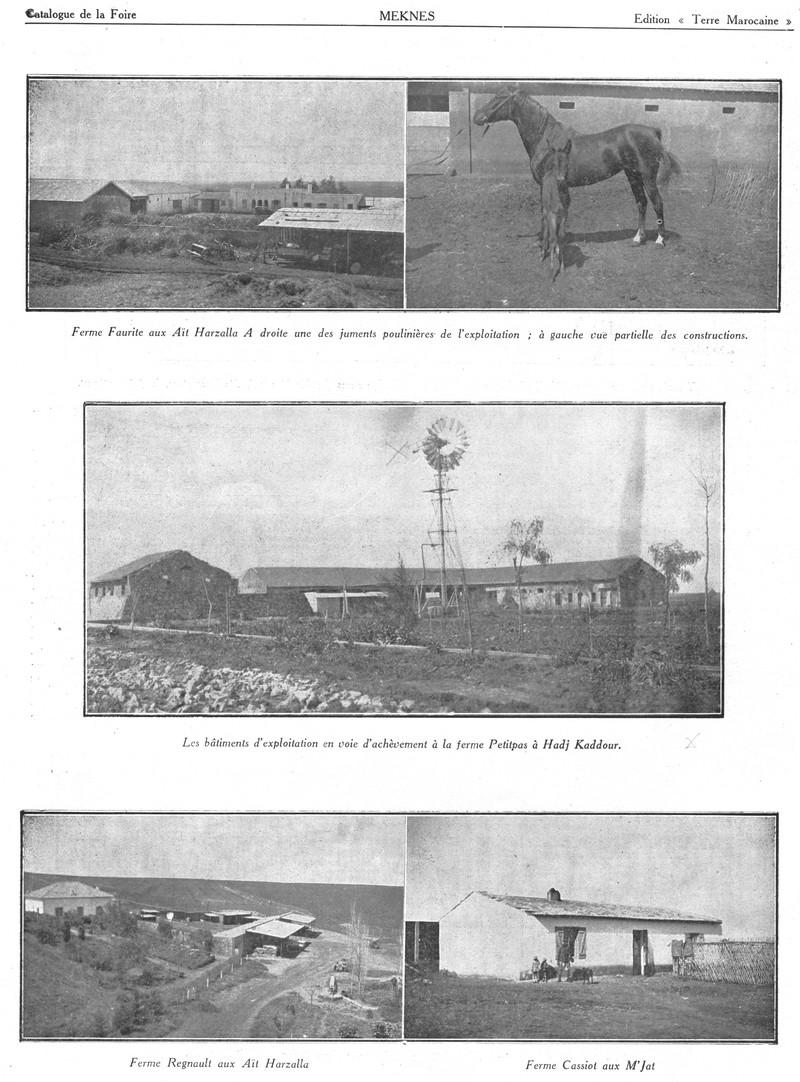 Foire de Meknès - Page 2 Swsca149