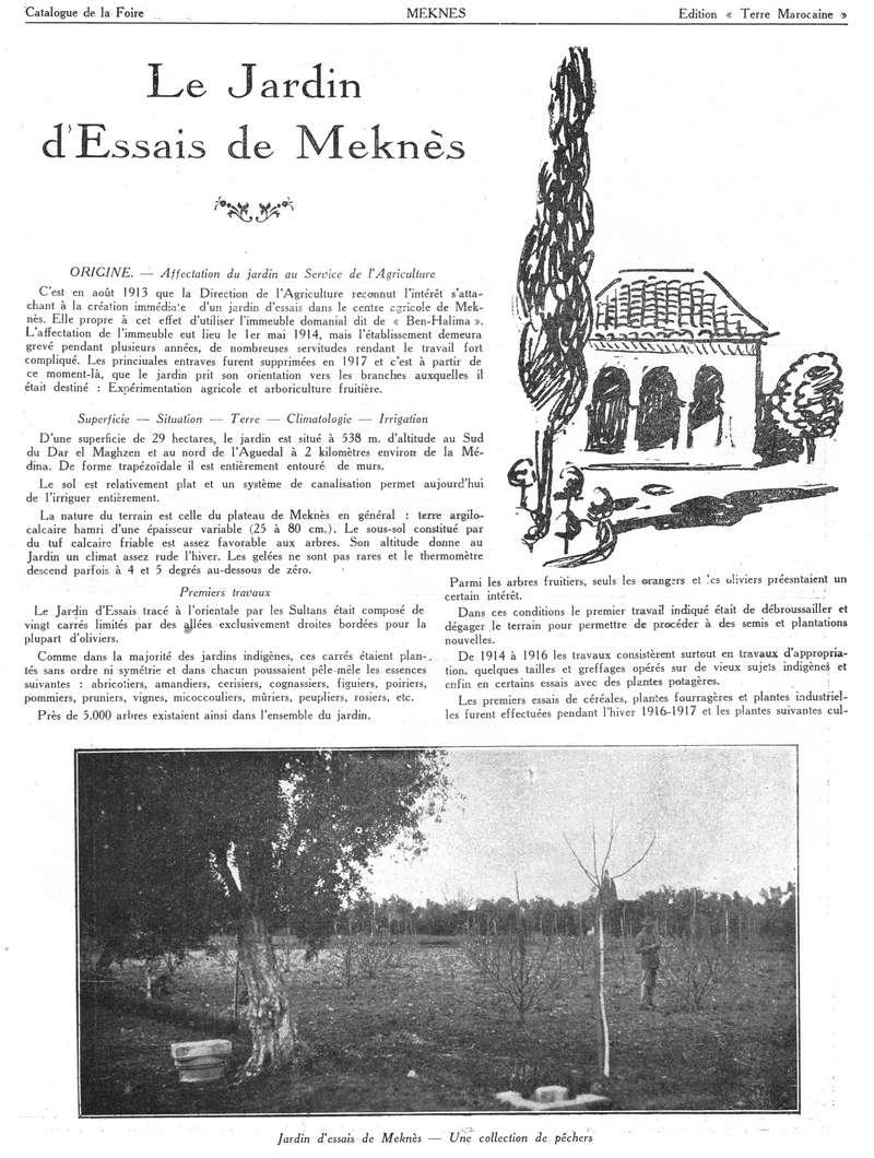 Foire de Meknès - Page 3 Swsca160