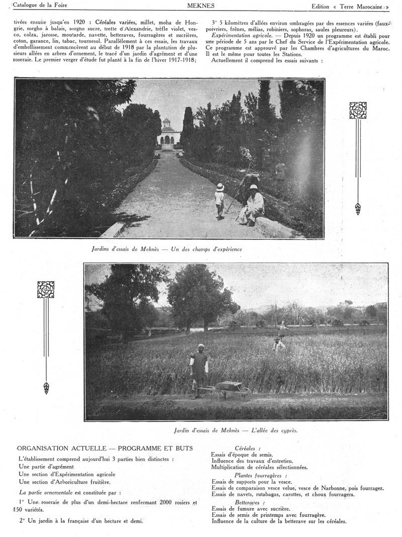 Foire de Meknès - Page 3 Swsca161