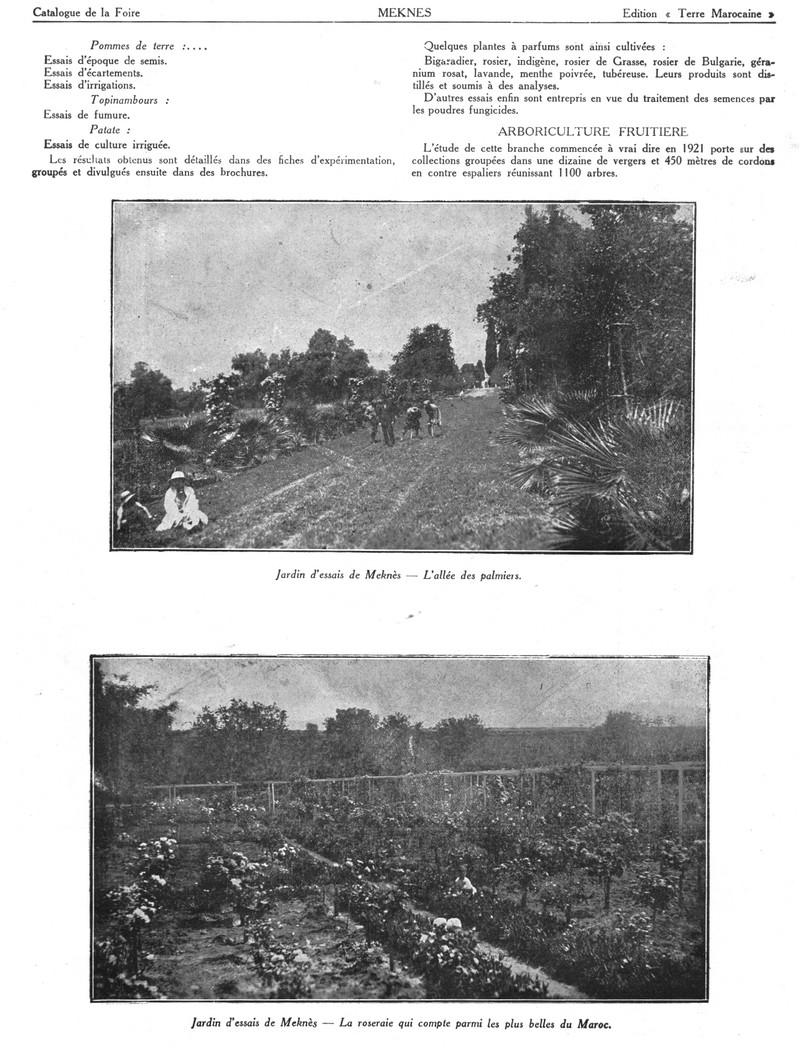 Foire de Meknès - Page 3 Swsca162