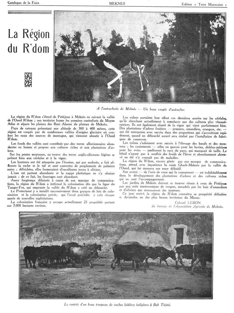 Foire de Meknès - Page 3 Swsca166
