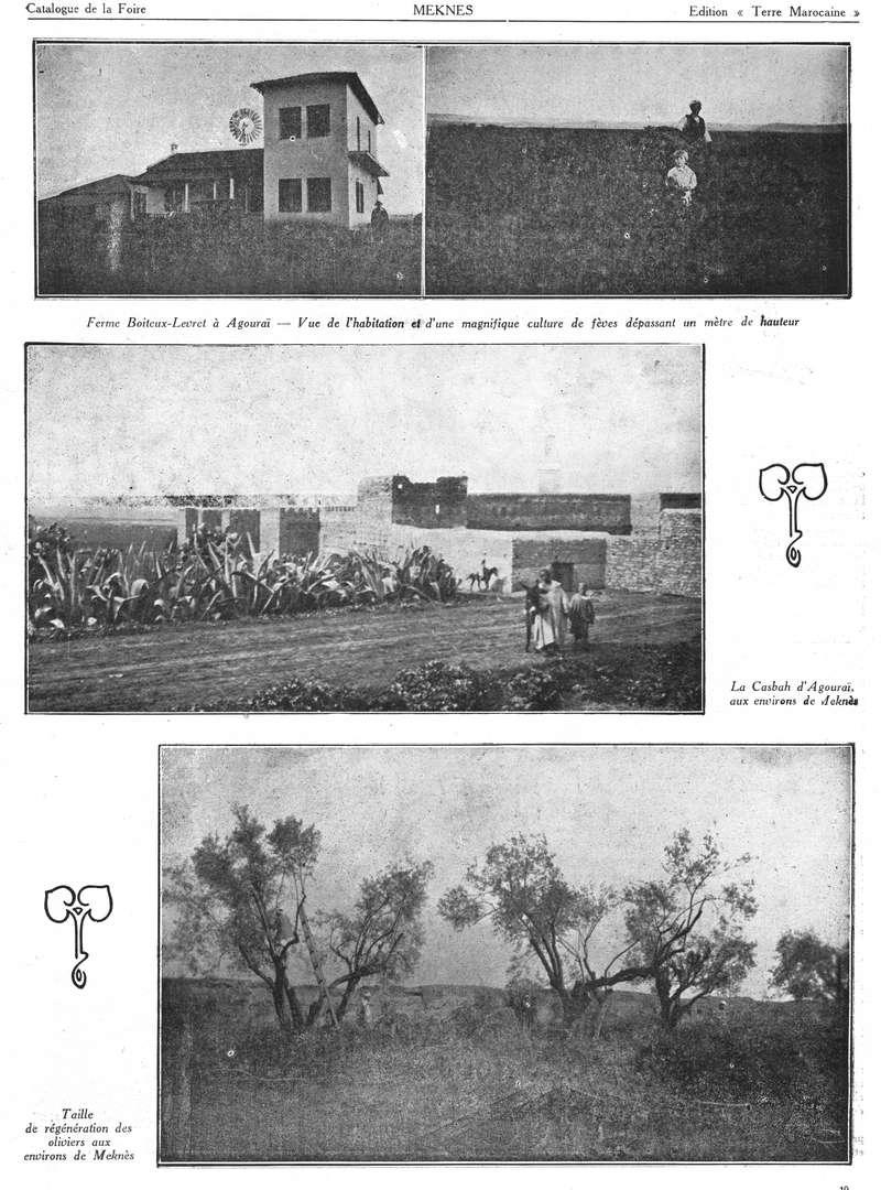 Foire de Meknès - Page 3 Swsca173