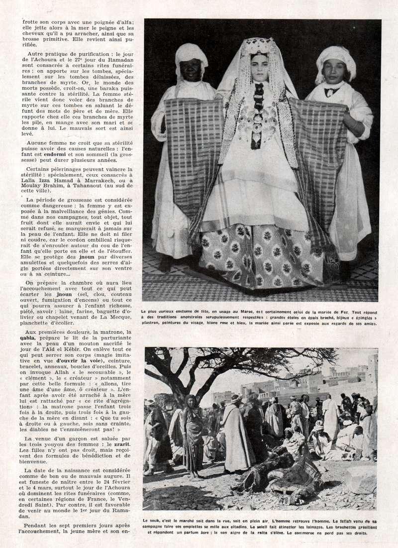 MAROC Terre d'Avenir - Page 2 Swsca211
