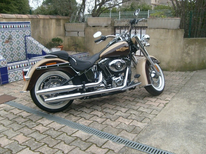 By Street Bob > welcome  Deluxe  S7300114