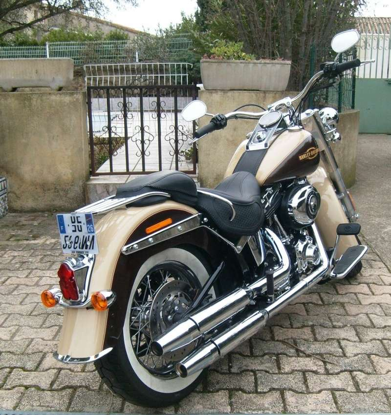 By Street Bob > welcome  Deluxe  S7300115