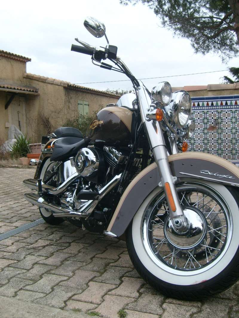 By Street Bob > welcome  Deluxe  S7300116