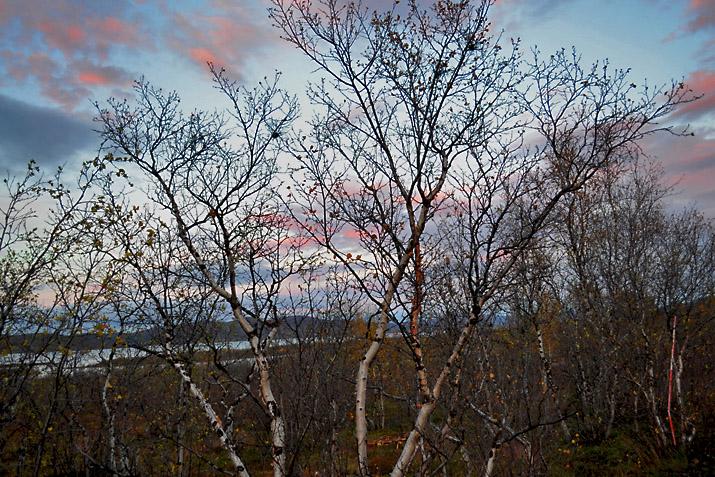 Окно в осень - Страница 5 Sw_zak12