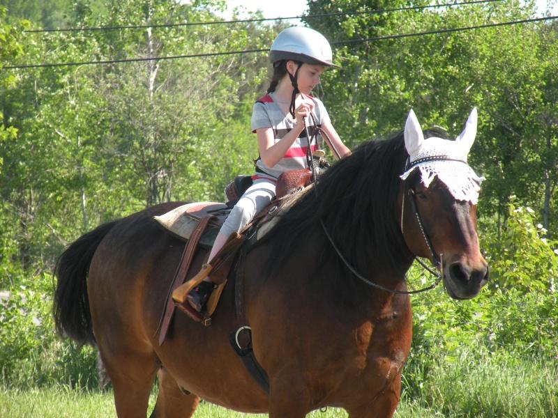 Mes amis les chevaux Lya-ma10