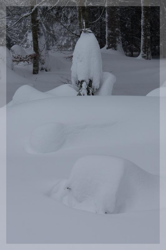 Le temps de ce week end... encore de la neige ! Img_7612