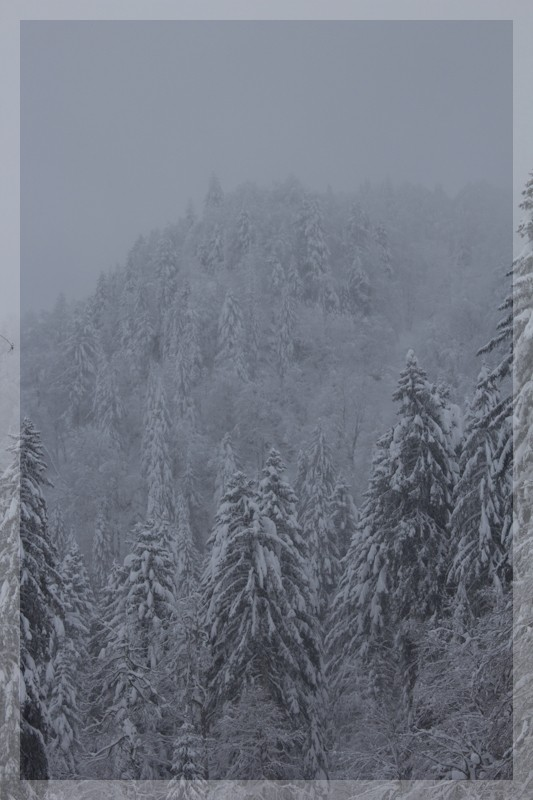 Le temps de ce week end... encore de la neige ! Img_7613