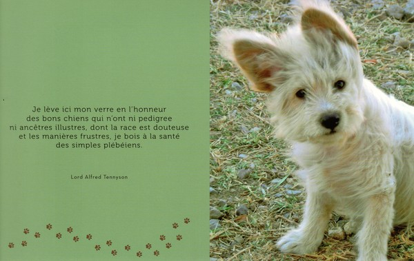 Citation Sur La Mort Dun Animal