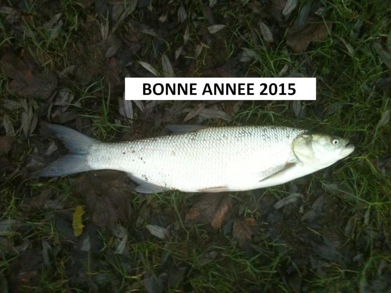 Bonne année 2015 Img_0110
