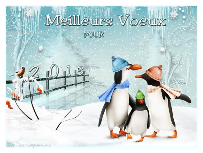 MEILLEURS VOEUX POUR 2015 Pingou10