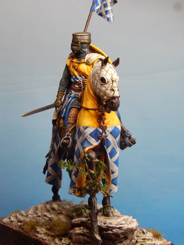 Photos du Chevalier Dscn1615