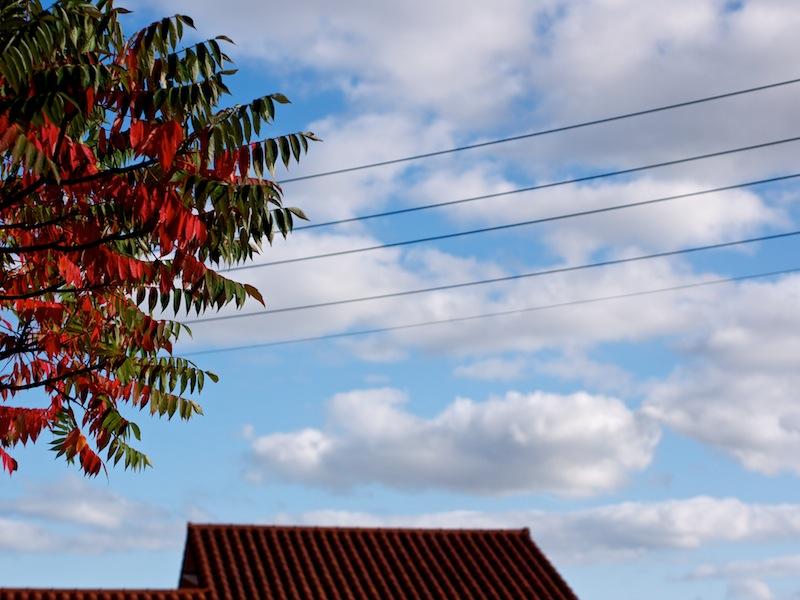 c'est l'automne... _1070710