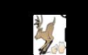 Jamboree 2013 - Domaine de la Butte Cerfs_10