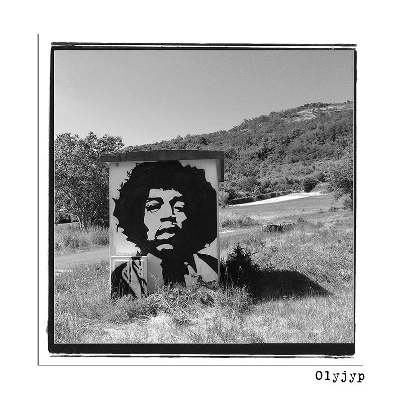Jimi Hendrix aime la campagne P7040112