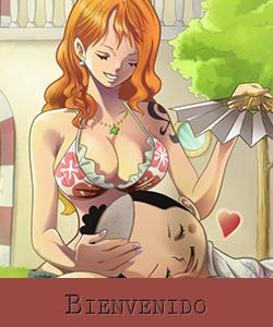 One Piece World 110