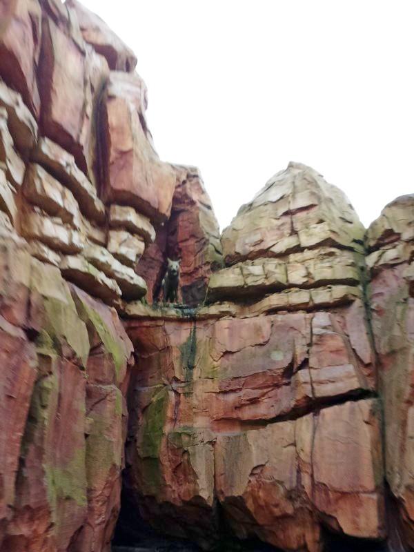 Curiosità e piccoli segreti al Disneyland park Image212