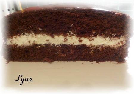 Gâteau au chocolat de Francine Marchand (ma version) Franci13