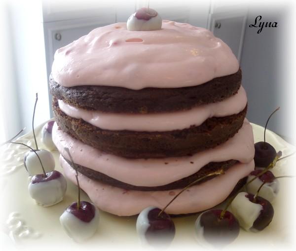 Gâteau au chocolat et cerises Gyteau12