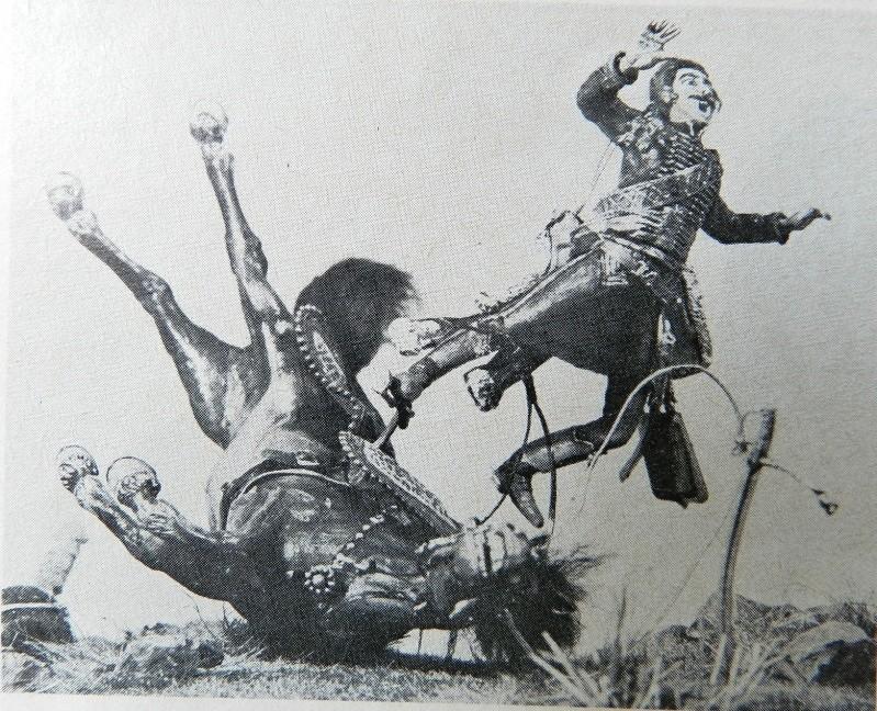 Chute de cheval. 00110