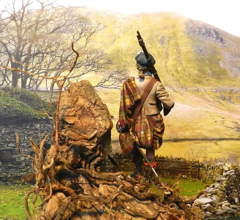 Highlands clansman (54mm) 00312