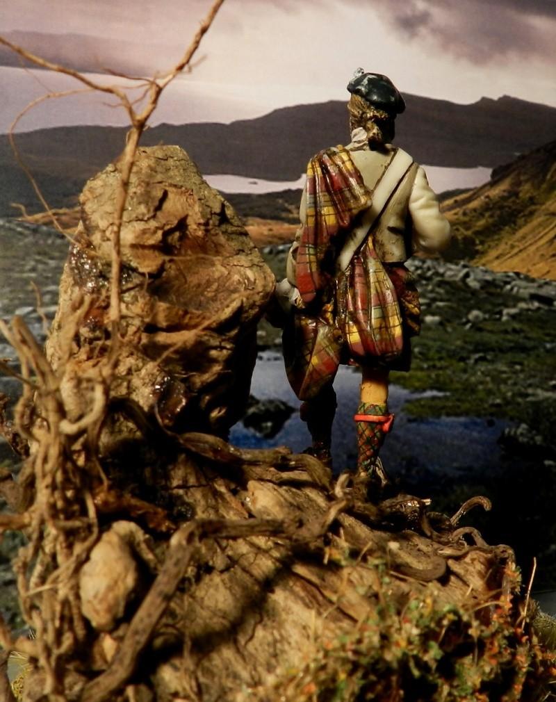 Highlands clansman (54mm) 00413