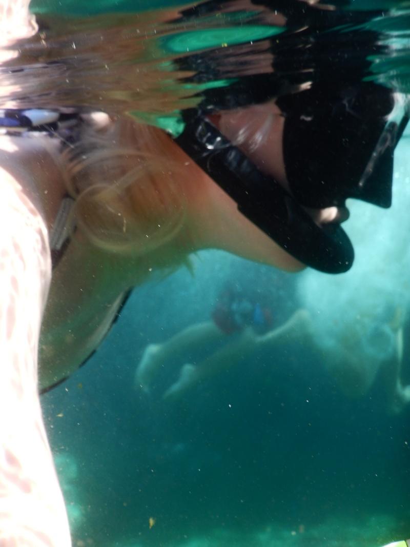 Le merveilleux voyage en Floride de Brenda et Rebecca en Juillet 2014 - Page 10 1210