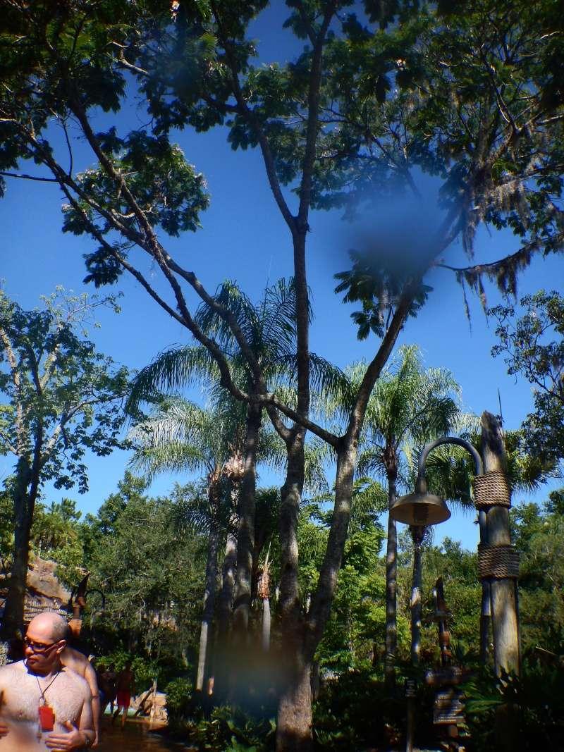 Le merveilleux voyage en Floride de Brenda et Rebecca en Juillet 2014 - Page 10 2310